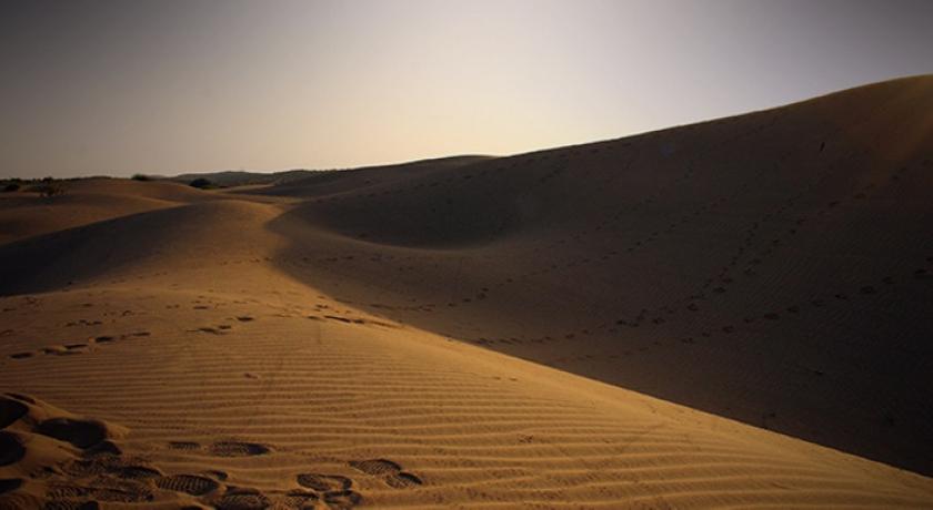 Oil Sand training